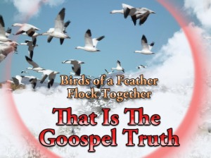 "Google images, ""Birds of a feather flock together"