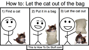 let the cat out of the bag2