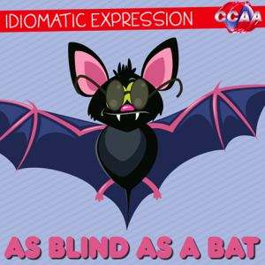 blind as a bat2